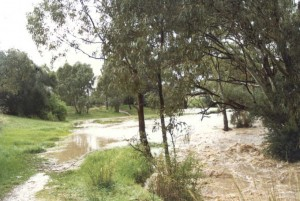flooddrycreek